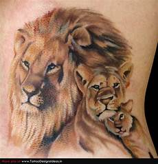 Lion And Lioness Designs 40 Amazing Lion Designs With Some Interesting Insights