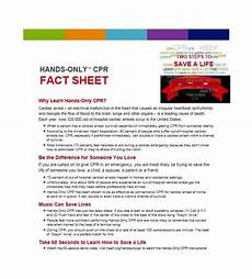Fact Sheet Template Publisher 10 Fact Sheet Templates Excel Pdf Formats