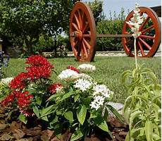 giardino fiorito gioco lavori realizzati gaia la multiservizi dal pollice verde