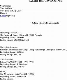 Salary History Template Hourly 3 Salary History Example Free Download