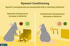 What Is Operant Conditioning And How Does It Work