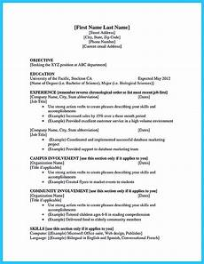 College Student Resume Example Best Current College Student Resume With No Experience