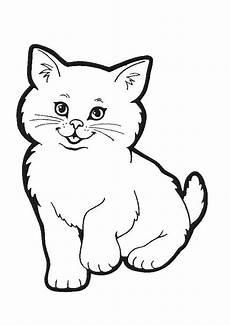 ausmalbilder katzen 5 ausmalbilder