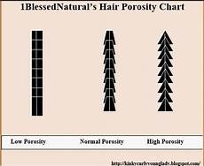 Hair Porosity Chart Porosity And Natural Hair