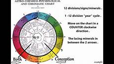 12 Cell Salts Chart 12 Cell Salts Vid 2 Of 3 The Inez Perry Astrological
