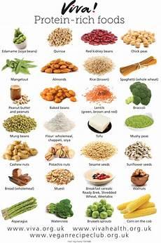 Protein Diet Chart Vegetarian Indian Vegan Protein Rich Foods Forking Fit