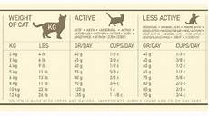 How Much To Feed A Cat Chart Can Cat Eat
