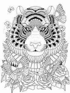 p 225 adulta colorante tigre imponente