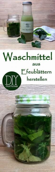 Malvorlagen Umweltschutz Selber Machen Waschmittel Aus Efeubl 228 Ttern Herstellen Waschmittel