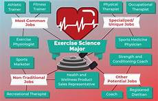 Exercise Science Job Salary 12 Jobs For Exercise Science Majors The University Network