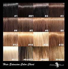 Different Shades Of Brown Hair Colour Chart Brown Color Quotes Quotesgram