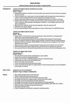 Director Of Sales Resume Assistant Director Sales Resume Samples Velvet Jobs