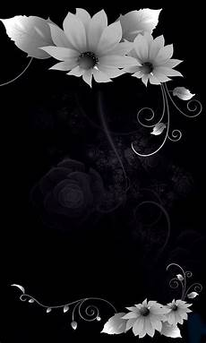 Flower Cell Phone Wallpaper by 480x800 171 In The Shadows Flowers 187 Cell Phone