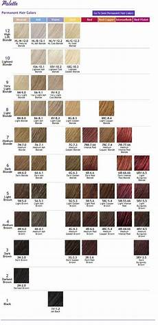 Hair Number Chart Pin By Wilson On Hair