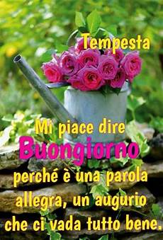 mandare dei fiori buongiorno immagini con fiori e frasi fotowhatsapp it