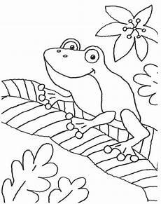 Malvorlage Frosch Im Teich Ausmalbild Tiere Frosch Auf Einem Blatt Kostenlos Ausdrucken