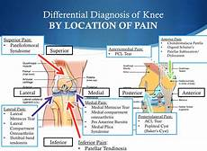 Back Diagnosis Chart The 5 Must Know Ws About A Knee For Running