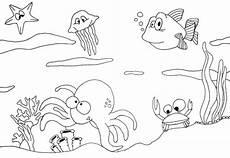Kostenlose Malvorlagen Unterwasserwelt Unterwasser Ausmalbilder Malvorlage Finden Sie Die Besten