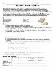 Potato Osmosis Lab Plasmolysis And Osmosis Lab With Potatoes