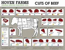 Beef Cuts Chart Pin On Margie S Mess