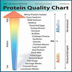 Most Protein Food Chart High Protein Food Teamrich Wordpress Com