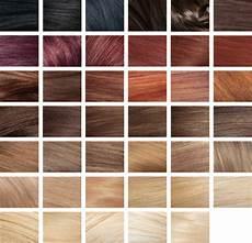 Revlon Hair Color Chart Revlon Colorsilk Hair Color Brown Black 1 Kit Target