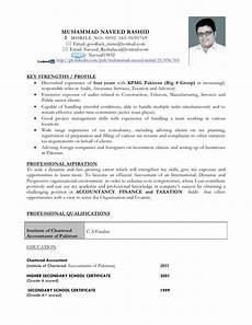 Big 4 Resume Sample Personal Cv Naveed