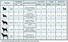 Goldendoodle Food Chart Dog Size Chart Jpg Dog Weight Dogs Dog Size Chart