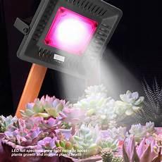 Horticultural Led Grow Lights Walmart Walfront Led Grow Light Full Spectrum Plant Lamp 50w Grow