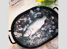 Seabass, Whole, Fresh   Song Fish Dealer Pte Ltd