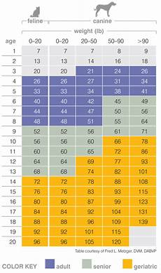 Previcox Dosage Chart For Dogs Veterinary Services Page 3 Snelgrove Vet Brampton On