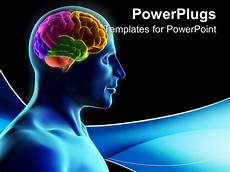 Brain Ppt Templates Powerpoint Template Human Silhouette With Parts Of The