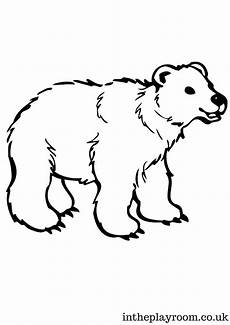 arctic animals colouring pages bear coloring pages