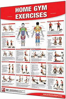 Workout Chart For Gym Pdf Productive Fitness Home Gym Exercises