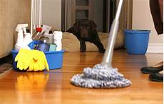 House Clean Services Benefits Of Professional House Cleaning House Cleaning