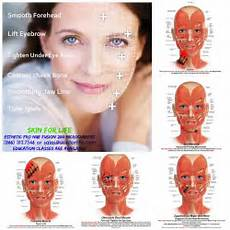 Facial Techniques Chart Skin For Life Microcurrent Techniques In 2019