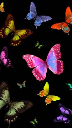 wallpaper iphone free butterfly colourfull butterfly mobile wallpapers wallpaper cave