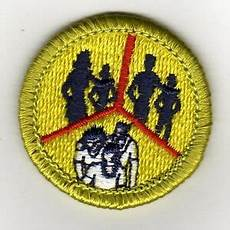 family life merit badge family life green brd merit badge typ h plastic back