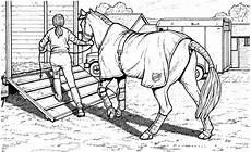 Ausmalbilder Pferde Dressur Ausmalbilder Pferde Springreiten Ausmalbilder Pferde