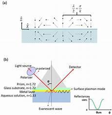 Surface Plasmon Resonance Sensors Free Full Text Microfluidic Surface Plasmon