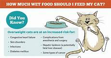 How Much To Feed A Cat Chart How Much Food Should I Feed My Cat Chart Catwalls