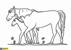 Ausmalbilder Zum Ausdrucken Kostenlos Pferde Ausmalbilder Pferde Gratis Ausmalbilder Pferde Kostenlos