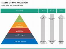 Levels Of Organization Levels Of Organization Powerpoint Template Sketchbubble
