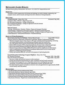 Outstanding Resume Examples Outstanding Cto Resume For Professionals