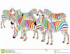 Colorful Zebra Design Colorful Zebras Royalty Free Stock Photo Image 29029385