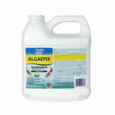 Algae Control Algaefix Liquid Algae Control 64oz 169d