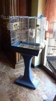 gabbie usate gabbie uccelli usate posot class