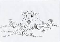 Malvorlagen Info Net Malvorlagen Tiere Lamm Tippsvorlage Info Tippsvorlage Info