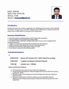 Logistic Coordinator Cv Logistics Coordinator Resume Mt Home Arts