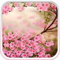 flower wallpaper live flowers live wallpaper android apps on play